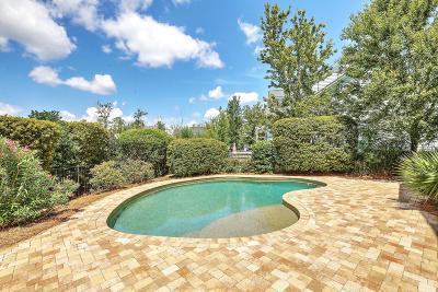 Mount Pleasant Single Family Home For Sale: 2970 Sturbridge Road