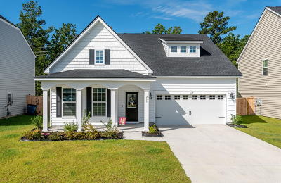 Summerville Single Family Home For Sale: 229 Firewheel Court