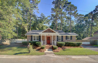 Summerville Single Family Home For Sale: 206 Peters Street