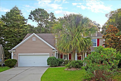 Summerville Single Family Home For Sale: 9341 Ayscough Road