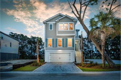 Charleston County Single Family Home For Sale: 117 Alder Circle