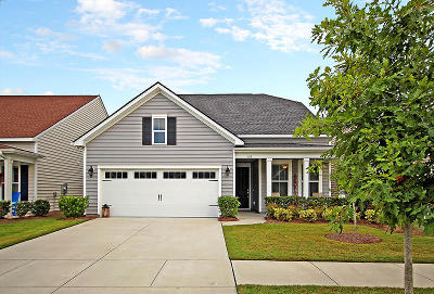 Summerville Single Family Home For Sale: 115 Harbor Trace Lane