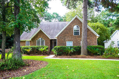 Mount Pleasant Single Family Home For Sale: 329 Hook Lane