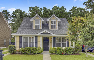 Mount Pleasant Single Family Home For Sale: 2820 Caitlins Way