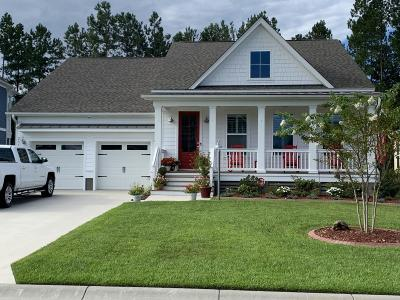 Summerville Single Family Home For Sale: 251 Calm Water Way