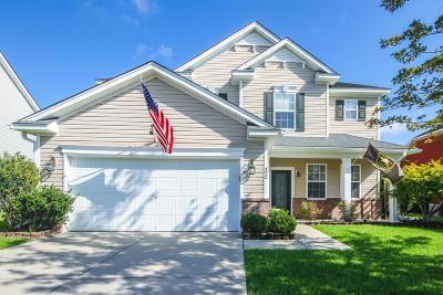 Moncks Corner Single Family Home For Sale: 422 Glenmore Drive