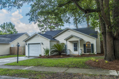 Mount Pleasant Single Family Home For Sale: 1983 Armory Drive