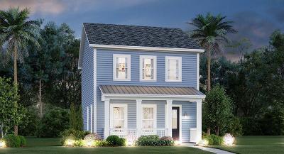 Charleston Single Family Home For Sale: 207 Barons Drive