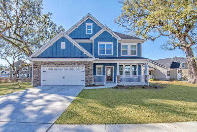 Summerville Single Family Home Contingent: 163 Daniels Ridge Drive