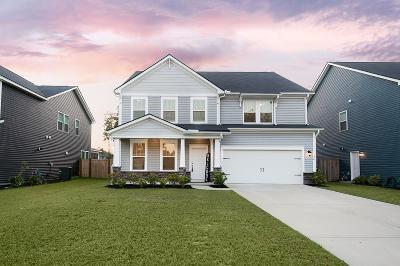 Summerville Single Family Home For Sale: 194 Basket Grass Lane