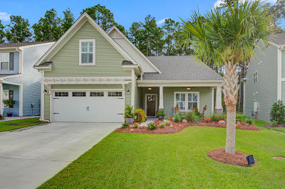 Summerville Single Family Home For Sale: 327 Dunlin Drive
