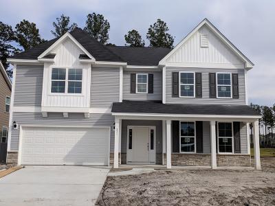 Summerville SC Single Family Home For Sale: $397,748