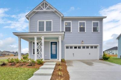Moncks Corner Single Family Home For Sale: 554 Pendleton Drive