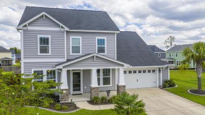 Moncks Corner Single Family Home For Sale: 423 Topcrest Lane