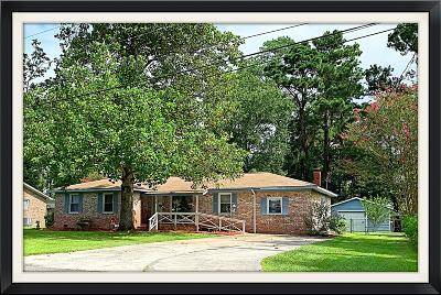 Summerville Single Family Home For Sale: 213 Farmhill Drive