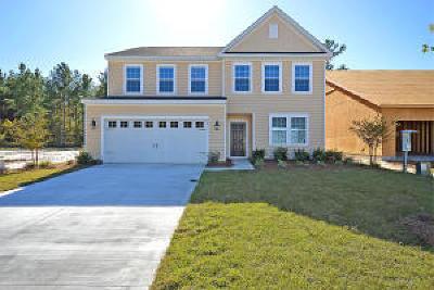 Goose Creek Single Family Home For Sale: 136 Daniels Creek Circle