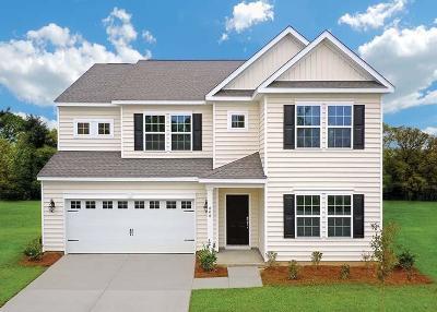 Summerville SC Single Family Home For Sale: $376,945