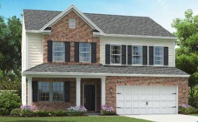 Goose Creek Single Family Home For Sale: 142 Daniels Creek Circle