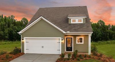 Goose Creek Single Family Home For Sale: 1 Daniels Creek Circle