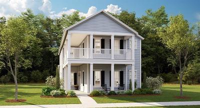 Single Family Home For Sale: 54 Wilson Creek Lane