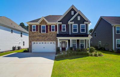 Single Family Home For Sale: 3263 Arrow Arum Drive