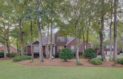 Summerville Single Family Home For Sale: 101 Elery Terrace