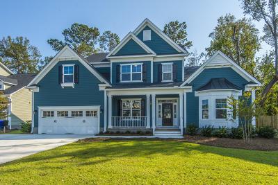Charleston Single Family Home For Sale: 196 Foliage Lane