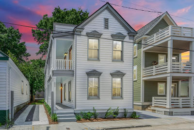 Charleston Single Family Home For Sale: 223 Nassau Street