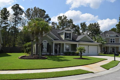 North Charleston Single Family Home For Sale: 8571 Royal Palms Lane