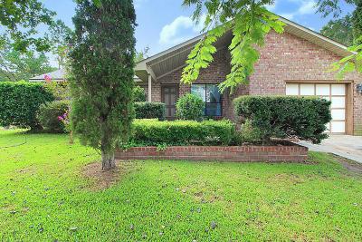 Goose Creek Single Family Home For Sale: 336 Huntsman Drive