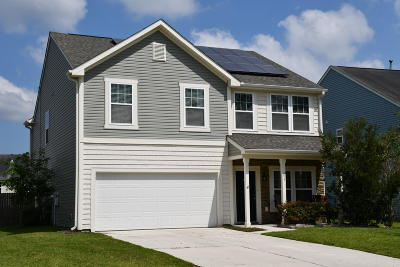 Summerville Single Family Home For Sale: 217 Balsam Circle