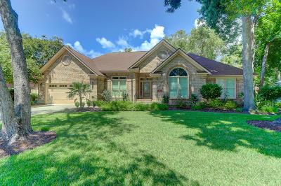 Mount Pleasant Single Family Home For Sale: 1318 Sandy Shore Court