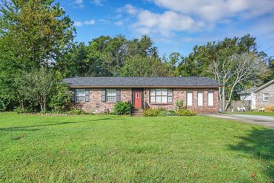 Charleston Single Family Home For Sale: 1241 Hepburn Street