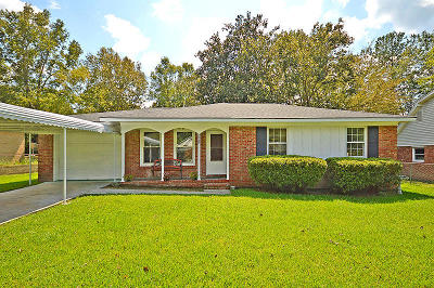 Summerville Single Family Home For Sale: 226 Judith Dr