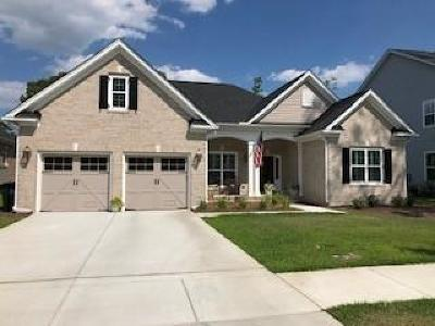 Charleston Single Family Home Contingent: 959 Foliage Lane