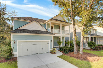 Charleston Single Family Home For Sale: 1146 Bright Court