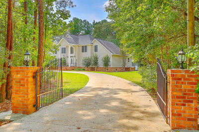 Moncks Corner Single Family Home For Sale: 388 Lazy Hill Road