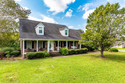 Summerville Single Family Home For Sale: 522 W Butternut Road