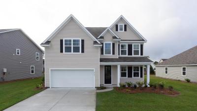 Single Family Home For Sale: 2723 Sunrose Lane