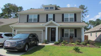 Summerville Single Family Home For Sale: 602 Kilarney Road