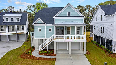 Mount Pleasant SC Single Family Home For Sale: $615,430