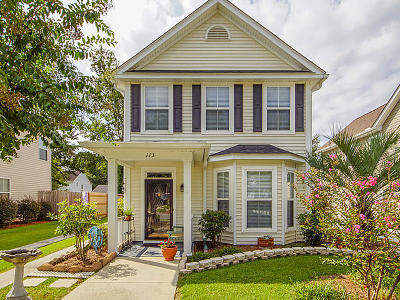 Summerville Single Family Home For Sale: 113 St Phillips Row