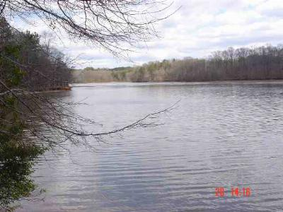 Anderson County, Oconee County, Pickens County Residential Lots & Land For Sale: 6497 Toccoa Hwy (123)