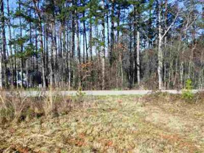 Residential Lots & Land For Sale: Lot (A) 1 Burnt Tanyard