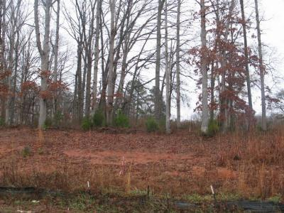 Anderson County Residential Lots & Land For Sale: Lot #3 Concord Rd