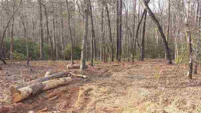 Residential Lots & Land Withdrawn: Lot 52 Pleasant View Dr