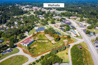 Walhalla Commercial For Sale: 5.57 Ac South Broad Street