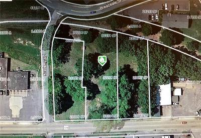 Anderson County Residential Lots & Land For Sale: 205.207,209 Anderson Street