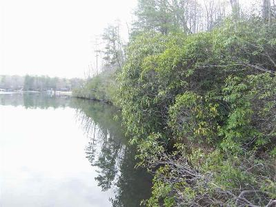 Residential Lots & Land For Sale: 895 Ross Mountain Road