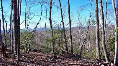 Residential Lots & Land For Sale: 110 Cliffside Trail